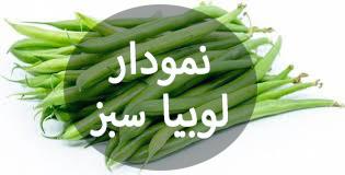 لوبیا سبز2