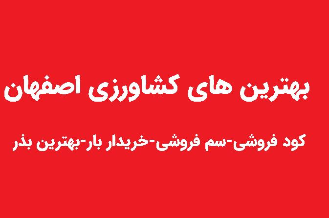بهترین کشاورزی اصفهان